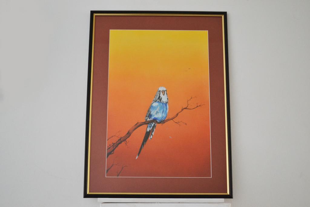Tablou Papagal 59x43 cm 140 RON